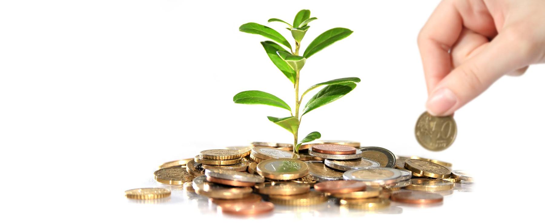 EME finanziamenti e contributi